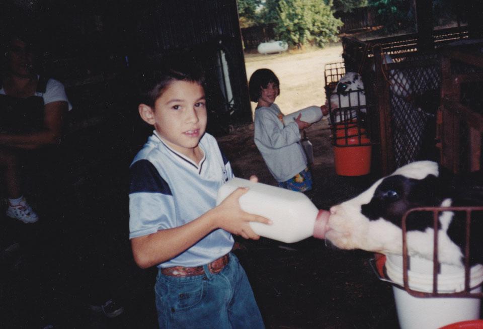 The Jimenez Family Feeding Calves circa 1990s.